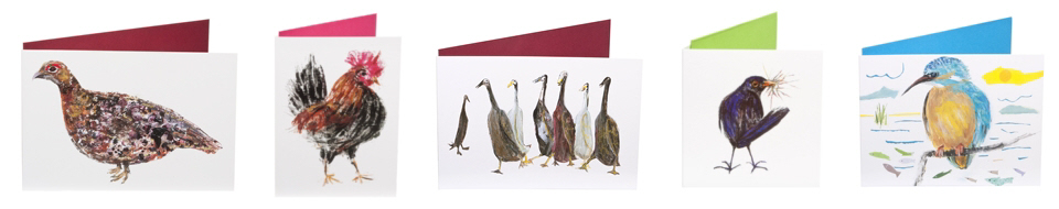 A range of greeting cards with images of birds and wildfowl