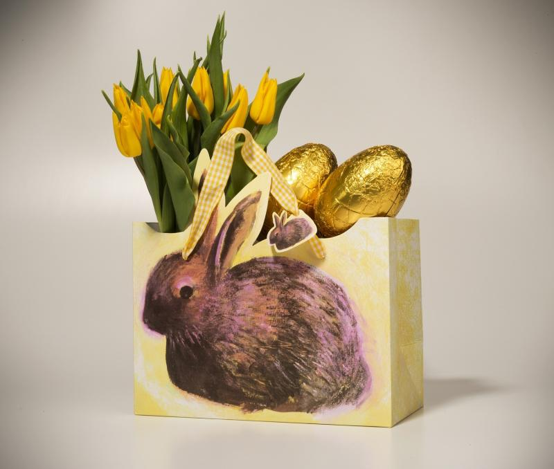 Easter bunny gift bag sold out gb01 artists on cards ltd easter bunny gift bag sold out negle Images