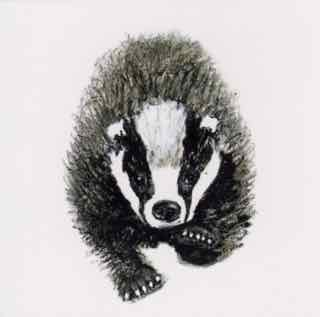Luv a Badger