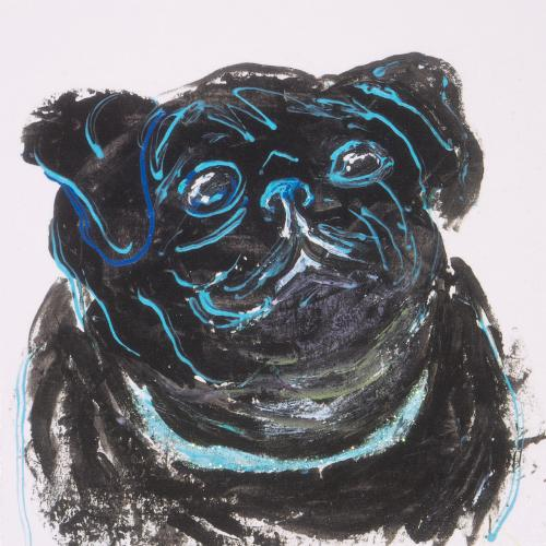 Tiberius the Pug Dog
